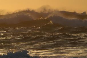 大波 波しぶき 逆光 台風 低気圧の写真素材 [FYI00439968]