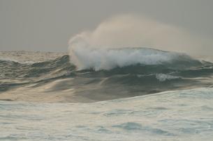波頭 白波の写真素材 [FYI00440007]