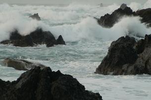 室戸岬の荒波の写真素材 [FYI00440015]