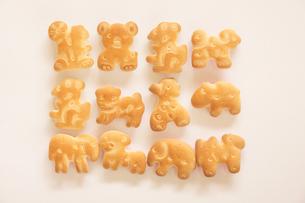 動物のキャラクターのクッキーの写真素材 [FYI00440127]