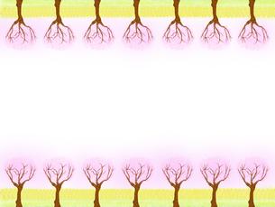 桜の木のフレームの写真素材 [FYI00440198]