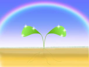 若葉と虹のイラストの写真素材 [FYI00440217]