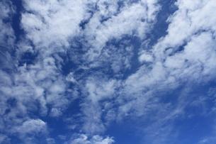 夏の空の写真素材 [FYI00440423]