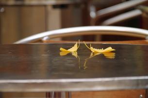 イチョウの葉の写真素材 [FYI00440612]