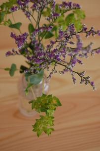 紫のスターチスの写真素材 [FYI00440648]