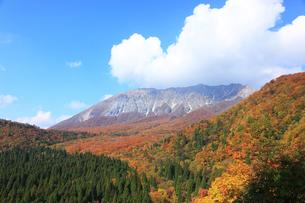 大山の写真素材 [FYI00440681]