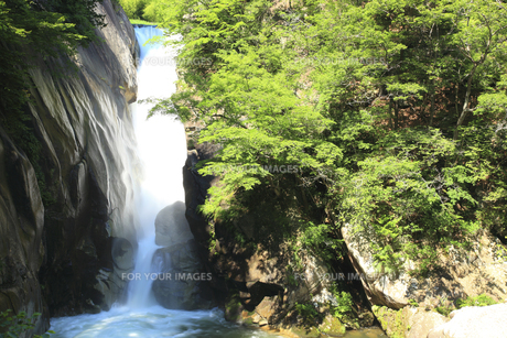 仙娥滝の素材 [FYI00440786]