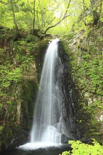 宇津江四十八滝の写真素材 [FYI00440818]