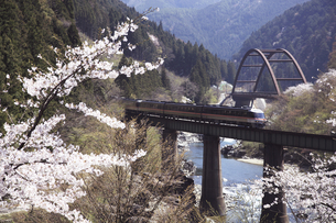 飛騨川鉄橋の写真素材 [FYI00440851]
