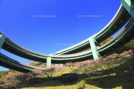 ル−プ橋の素材 [FYI00440856]