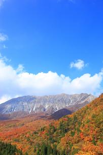 秋の大山南壁の写真素材 [FYI00440918]