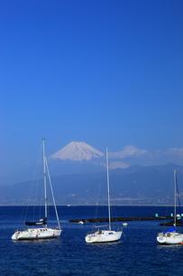 富士山とヨットの写真素材 [FYI00440922]