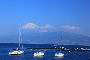 富士山とヨットの素材 [FYI00440926]