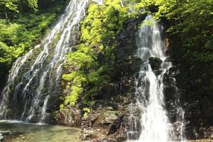 龍双ヶ滝の写真素材 [FYI00440943]