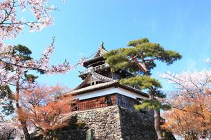 桜と城の素材 [FYI00440965]