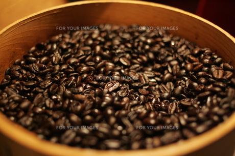コーヒーの写真素材 [FYI00441104]