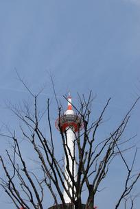 京都タワーの写真素材 [FYI00441152]