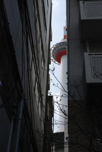 タワー覗き見の写真素材 [FYI00441165]