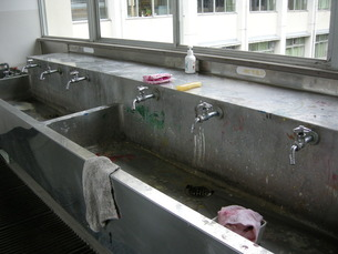 学校の手洗い場の写真素材 [FYI00441223]