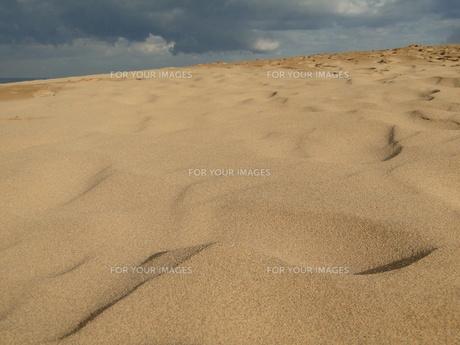 鳥取砂丘にての写真素材 [FYI00441281]