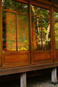 昔懐かし歪みガラスの写真素材 [FYI00441406]