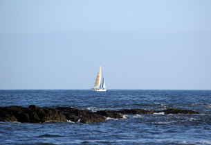 海に浮かぶヨットの写真素材 [FYI00442044]