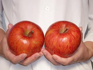 りんごの写真素材 [FYI00442072]