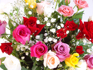 薔薇の花束の写真素材 [FYI00442108]
