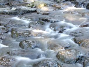 滝ノ谷川上流の写真素材 [FYI00442134]