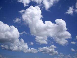夏空に白雲の写真素材 [FYI00442160]