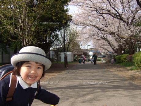 桜咲く幼稚園入園の写真素材 [FYI00442209]