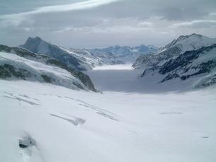 スフィンクス展望台から眺める雪原の写真素材 [FYI00442270]
