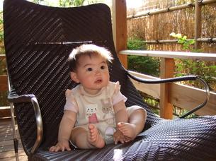 椅子に座る赤ちゃんの写真素材 [FYI00442283]