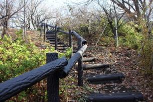 菊名桜山公園の階段の写真素材 [FYI00442294]