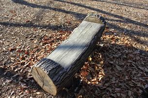 木のベンチの写真素材 [FYI00442300]