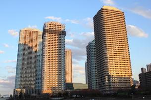佃島のマンション群の写真素材 [FYI00442360]