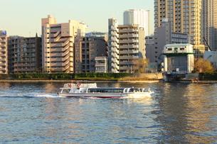 隅田川を下る水上バスの写真素材 [FYI00442365]