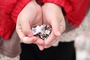 手のひらに貝殻の写真素材 [FYI00442383]