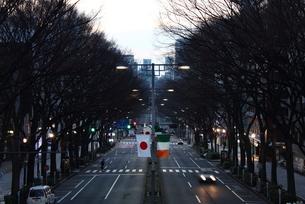 神宮橋歩道橋から早朝の表参道の写真素材 [FYI00442442]