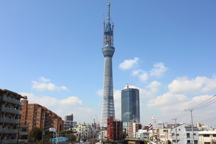柳島歩道橋から望む東京スカイツリーの写真素材 [FYI00442482]
