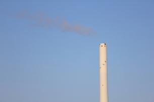江戸川清掃工場の煙突の写真素材 [FYI00442485]