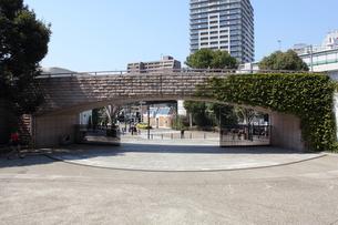 港の見える丘公園・フランス橋の素材 [FYI00442543]