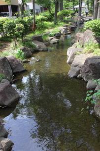 見沼代親水公園・せせらぎの写真素材 [FYI00442674]