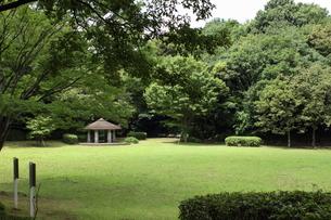 横浜・茅ヶ崎公園の写真素材 [FYI00442822]