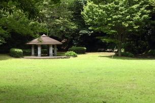 横浜・茅ヶ崎公園の写真素材 [FYI00442833]