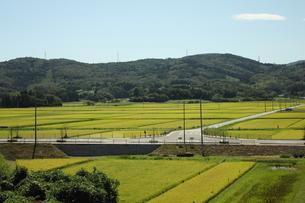 宮城県白井市旭町の田園風景の写真素材 [FYI00442936]