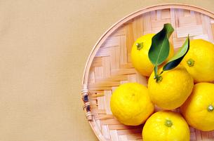 葉っぱ付き柚子1の写真素材 [FYI00443309]