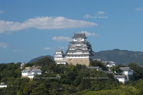 姫路城1の写真素材 [FYI00443328]
