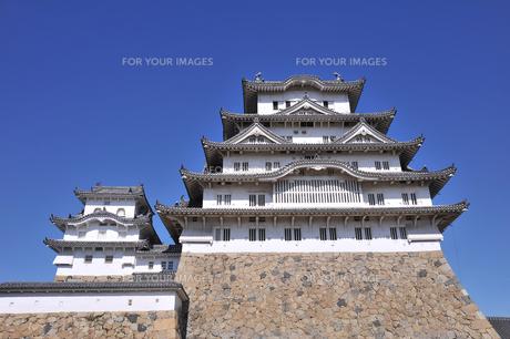 姫路城と青空1-2の素材 [FYI00443457]