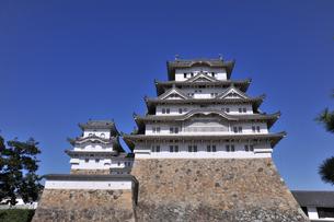 姫姫路城と青空1-1の素材 [FYI00443466]